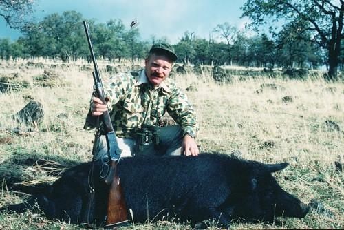 Winchester 71 .348 wild hog hunt