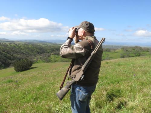 California Central Coast wild hog feral pig hunt Marlin .45-70