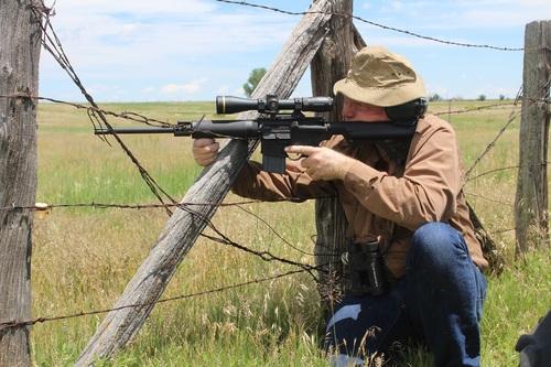 field shooting varmint hunting wyoming