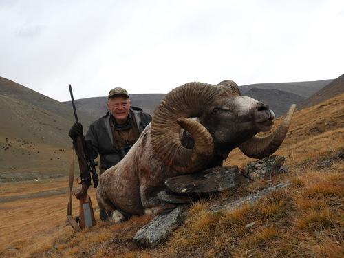 Mongolia hunt, Altai Argali, hunting