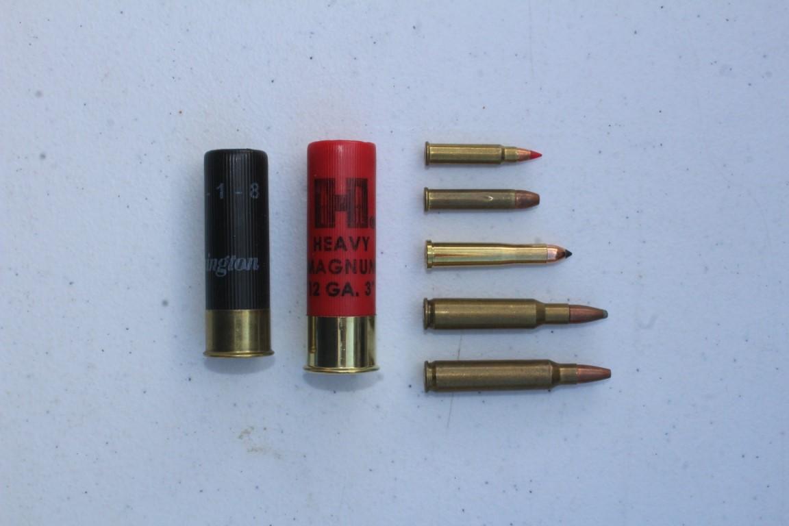 17 HMR, .22 WMR, .22 Hornet, .222 Remington, .223 Remington.