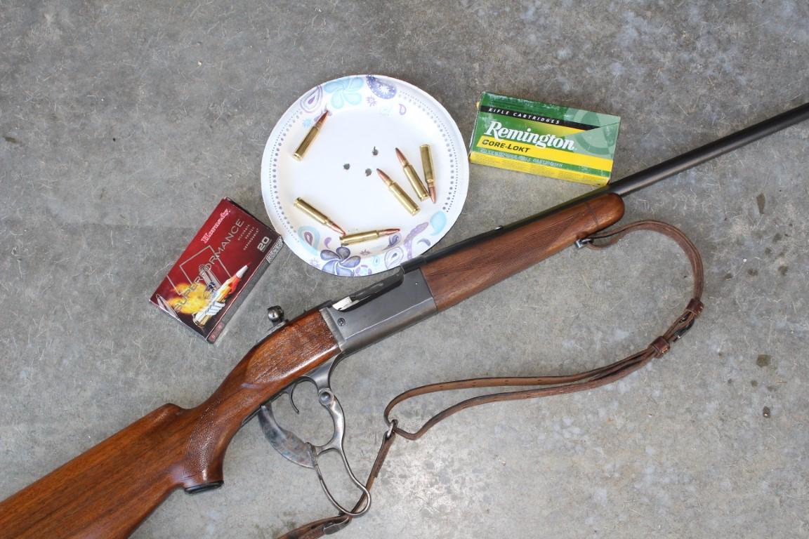 Boddington's rifles wear iron sights