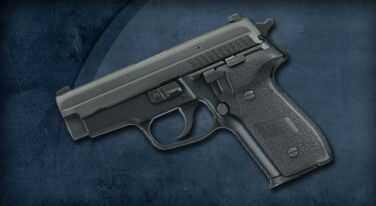 Sig Sauer P229 40 S&W SAS Gen2 SRT Short Reset Trigger Dehorning 2-12 Round Mags SIGLITE® Night Sights Semi-Automatic Pistol E2940SAS2B