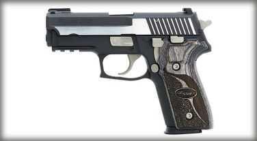 Sig Sauer P229 40 S&W Equinox Duotone Truglo Sights Semi-Automatic Pistol E29R40EQ