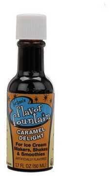YayLabs! Flavor Fountain Carmel Delight (Per 1) F-FF-BOTTLE-CD