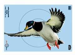 "Birchwood Casey Pregame Targets Duck, 12"" x 18"" (Per 100) Md: 35417"