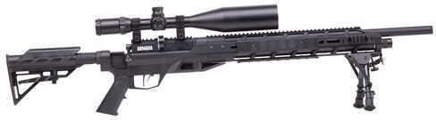 Benjamin Sheridan Benjamin Armada .22 PCP Rifle BTAP22SX
