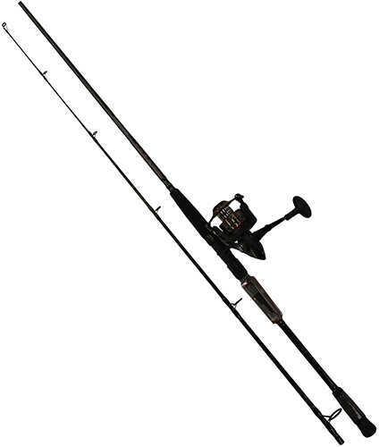 Pure Fishing / Jarden PENN FIERCE II 5BB 8'-2PC-M COMBO
