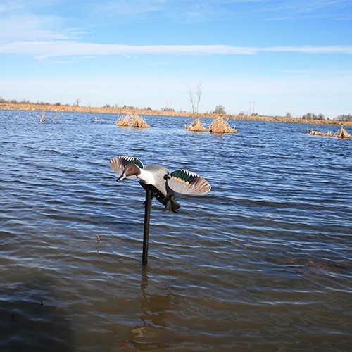 Mojo Decoys Elite Series Pintail Duck Decoy