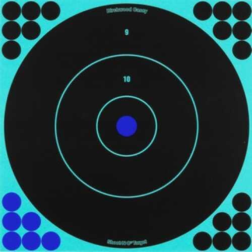 Birchwood Casey Shoot-N-C Targets: Bull's-Eye Per 100 34070