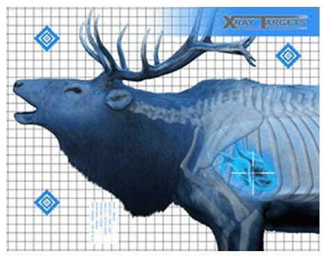 Champion Traps and Targets Elk Target (6 Pack) 45904