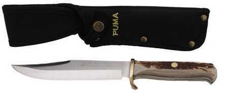 Puma Bowie SGB 6116396