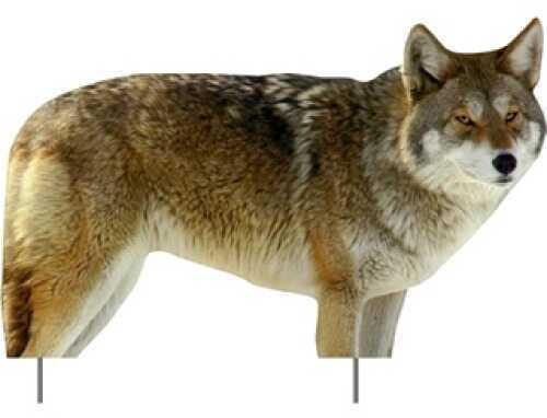 Extreme Dimension Wildlife Phantom Decoy Coyote ED-PD-512