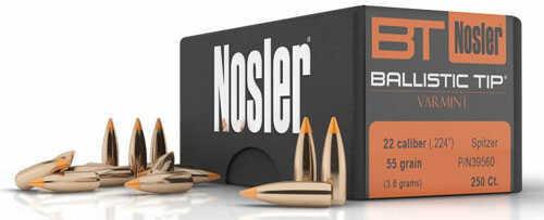 Nosler Bullet 22 Caliber 55 Grains Bulk (8200) BT - 11188392