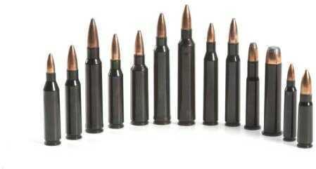 Traditions Rifle Training Cartridge 22-250 Rem (2 CT)