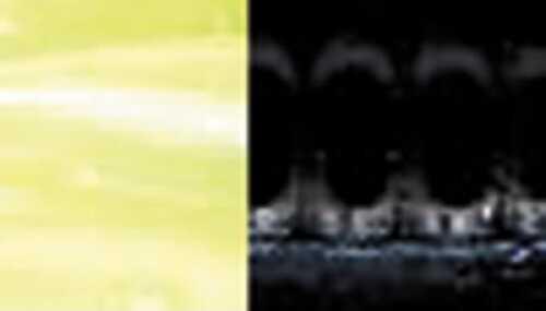 Deadly Dudley Terror Tail 10pk 4in Black Chartreuse Tail Md#: DDTT-806