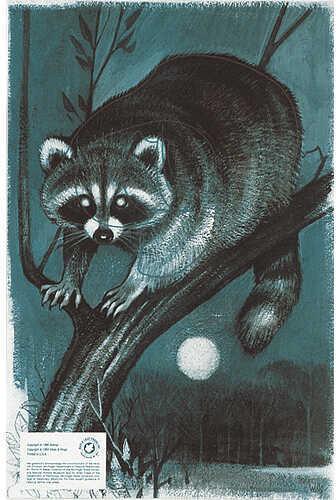 Maple Leaf Press Inc. MAPLE LEAF PRESS INC Maple Leaf Authentic Animal Faces 12''x18'' Raccoon 11069