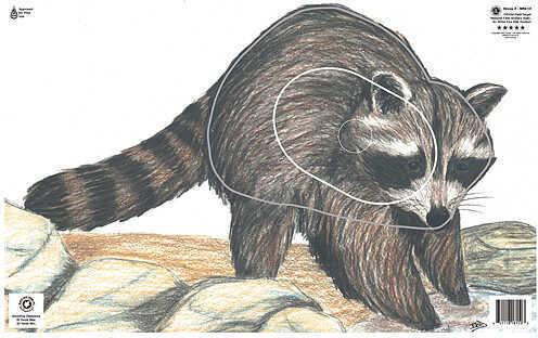 Maple Leaf Press Inc. MAPLE LEAF PRESS INC Maple Leaf NFAA Animal Faces Group 3 Raccoon 14160