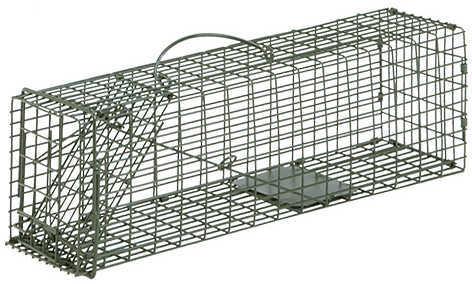Duke Wildlife Traps Duke Single Door Wildlife Cage Traps #1 Rodent 16''x5''x5'' 1100
