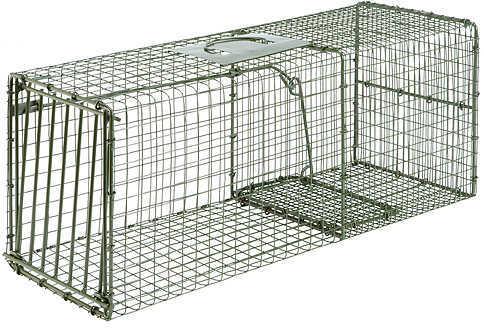 DUKE WILDLIFE TRAPS Duke Single Door Heavy Duty Wildlife Cage Traps X Large-Fox 36''x15''x14'' 1114