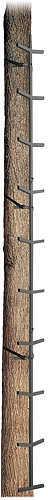 Big Dog Treestands Big Dog Climbing Sticks - 16ft. 4 Section 35729