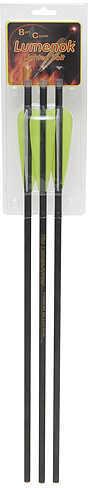 Lumenok Carbon Crossbow Bolts 20in Moon 3/pk. 37996