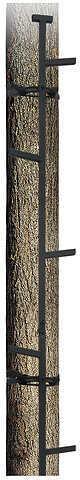 Big Dog Treestands Big Dog Alternating Step 20' Stick ladder 39951