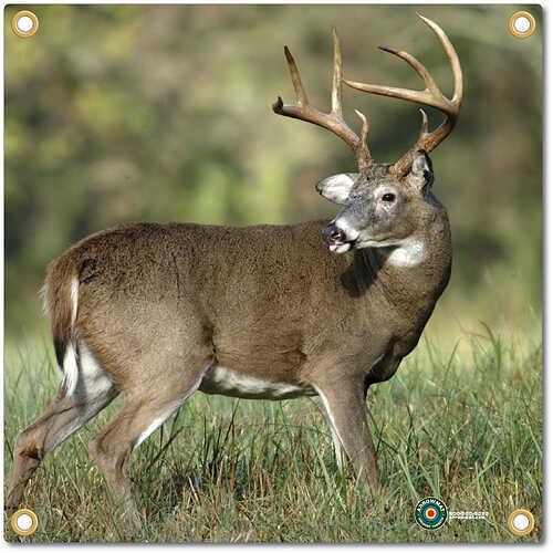 Arrowmat Foam Rubber Target Face - Big Buck 17''x17'' 50940