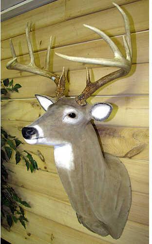 Bishop's Hunting Supplies BHS EZ Mount Deer Head 54973