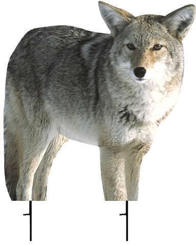 """Montana Decoy Montana Kojo Coyote Decoy 21""""x22"""" Predator 57630"""