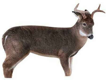 Montana Decoy The Freshman Buck Decoy Model: 0046