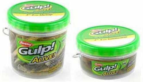 Pure Fishing / Jarden Berkley Gulp Alive Shrimp - Pint Pint 3in Pearl White/Chartreuse Md#: GAPSHR3-PWC