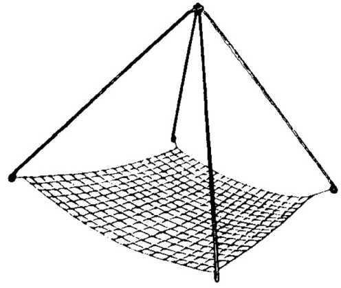 Taitex Fishing Taitex Crawfish Net-19X19 12pk (Rn842) RN842