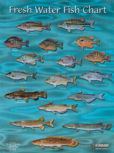 Standard Map Standard Fish Chart Fresh Water Md#: FC002