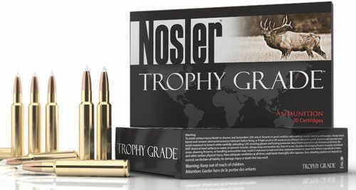 Nosler Rifle 30-06 180 Gr Ballistic Tip 20 Rounds Ammunition 60058