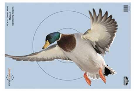"""Birchwood Casey B Casey PREGAME Duck 12""""x18"""" 8Pk"""