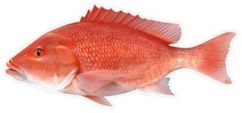 Salty Bones / Advanced Graphics Salty Bones /Advanced Graphics Salty Bones Profile Fish Decal 13-3/4in X 4-3/4in Red Snapper Md#: BPF2505