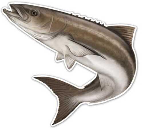 Salty Bones / Advanced Graphics Salty Bones /Advanced Graphics Salty Bones Action Fish Decal 5-1/2in X 7in Cobia Md#: ED2502SB