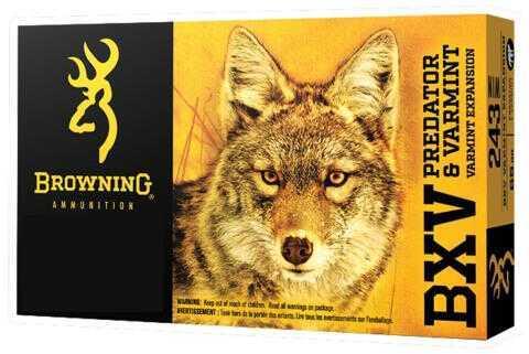 Browning BXV Predator and Varmint 223 Remington 50 Grains Polymer Tip Ammunition, 20 Rounds Per Box Md: B1923