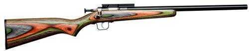 Crickett Single Shot Rifle  22 Long Rifle  Heavy Barrel With Scope Base  Laminated Stock Bolt Action Rifle