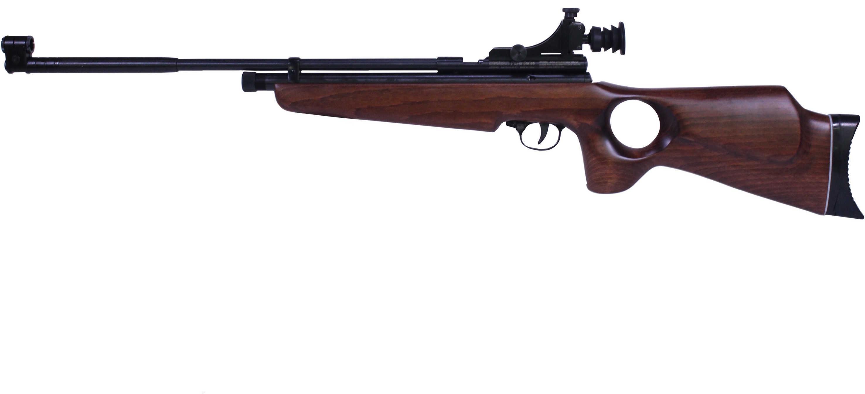 Beeman SAG CO2 Air Rifle  22 Caliber with Thumbhole Stock Md