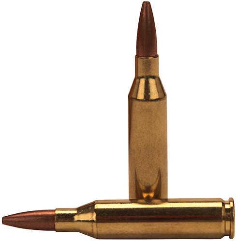 Federal Cartridge 243 Winchester 95gr, Fusion, (Per 20) F243FS1