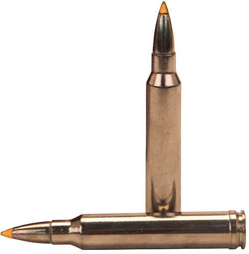 Federal Cartridge 300 Winchester Magnum 300 Win Mag, Premium,180gr, Trophy Bond, V-Shock, (Per 20) P300WTT1