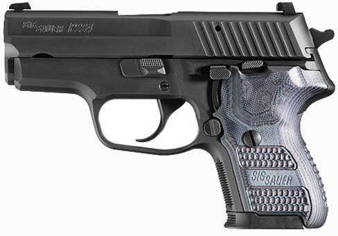 """Sig Sauer SP2022 9mm Luger 3.5"""" Barrel 10 Round Night Sights Black CA Legal Semi Automatic Pistol E249XTMBLKGRYDAK"""