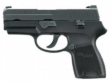 Sig Sauer P250 380 ACP Black Nitron Finish Subcompact Semi Automatic Pistol 250SC380BSS